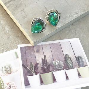 NWT iridescent Stud Earrings